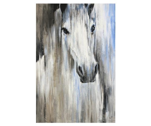 cuadro-cara-caballo