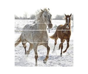 cuadro-espejos-dos-caballos